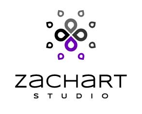 ZS_logo_pion